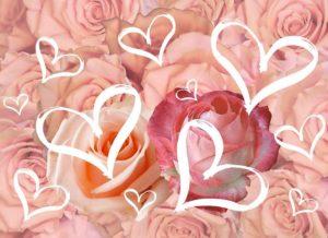 Carte postale de fleur avec des roses