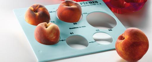 calibrage fruits